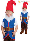 Child Gnome Fancy Dress Costume Dwarf Fairytale Book Kids Boys Toddler Outfit