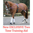 EQUINE TRAINING PREMIERE LUNGING ROLLER PESSOA BASED SCHOOLING SYSTEM ONE SIZE