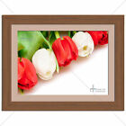 Red White Tulip Floral Flower Print - Various Sizes - Gift Idea