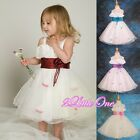 Wedding Flower Girl Petals Tulle Formal Dresses Pageant Party Size 2T-11 FG061