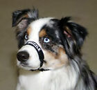 Dog Muzzles Medium & Large Dog Muzzle Adjustable Dog Muzzle for Biting
