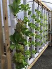 Two 5ft Vertical Garden Towers Kit 18-36 plants - Hydroponic / Aquaponics