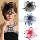 Racing Wedding Party Race Game Headpiece Fascinator Hat Hair Clip Feather