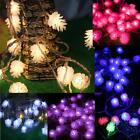 5M 20LED Pine Cone Fairy String Light Waterproof Merry Christmas Outdoor Decor