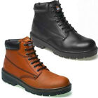 MENS DICKIES ANTRIM FA23333 LEATHER SAFETY BOOTS STEEL TOE CAP WORK SHOES SZ6-13