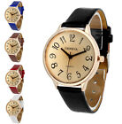 New Women Lady Sport Casual Stainless Steel Analog Quartz Fashion Wrist Watches