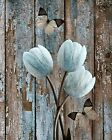 Rustic Tulip Flowers Butterfly Bathroom Bedroom Brown Blue Home Decor Picture