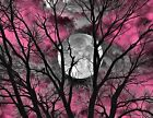 Pink Gray Wall Decor, Contemporary Pink Sky Tree Moon, Girls Room Matted Artwork