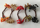 25 DOUBLE STEMS OF ARTIFICIAL BERRIES CRAFTS/FLOWER/CAKE DECORATING