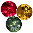 1pc 20 LED Christmas Wedding Flower Rose Fairy String Lights Lamp Indoor/Outdoor