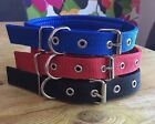 Nylon Dog Collar Soft Padded Strong Small to Large Black Blue Red Adjustable