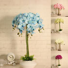 Artificial Butterfly Orchid Flowers Bouquet Phalaenopsis Floral Wedding Decor