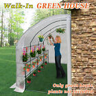 New Large Walk-In Wall Greenhouse 10x5x7'H w 3 tiers/6 Shelves Gardening