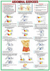 Abdominal Exercises, Core Muscles, Abs, Six pack, Fitness Poster
