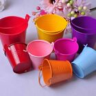 10 Colors Home Garden Candy Favor Box Pail Bucket Wedding Household Party Bucket