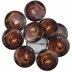 Soulfly Dragon Logo New Official Rock Metal Band Button Pin Badges