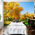Cloudless Weather 3D Full Wall Mural Photo Wallpaper Printing Home Kids Decor