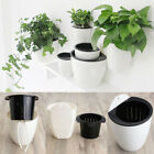 3 Sizes Wall Hanging Flower Plant Pot Plastic Planter Holder For Indoor Outdoor