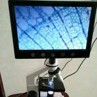 LCD Displayer with WF10X Eyepiece for Stereo or Biological Microscope Monitor