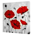 RED TULIPS B&W BACKGROUND PHOTO PRINT ON FRAMED CANVAS  WALL ART
