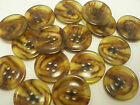 6 or 10  Rimed Faux Amber/Brown/Tortoise Shell Buttons 1 inch 7/8 13/16 5/8 T4