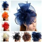 Lady Tulle Feather Fascinator Top Hat Wedding Church Birdcage Veil Headpiece