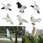 Lifelike Artificial Feathered Pigeon Bird for Displays, Crafting Decor PICK