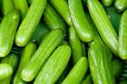 Persian Beit Alpha Cucumber Seeds, NON-GMO, Variety Sizes, FREE SHIPPING