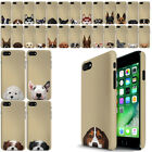 """For Apple iPhone 7/8 4.7"""" Dog Beige HARD Back Case Phone Cover"""