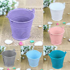 12×New Colorful Mini Metal Bucket Wedding Candy Favors Bucket Party Gift Favors