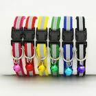 Pet Puppy Cat Kitten Soft Glossy Reflective Collar Safety Buckle with ~