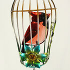 Metal Iron Birdcage Wind Chime for Home/Outdoor/Party/Garden/Yard Decoration