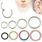 Hinged Seamless Segment Ring Surgical Steel Nose Hoop Earring Labret Septum Ring image
