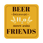 Beer because H2O Never Wins Friends Patio Sign, Beach Pool Party Decor Plaque