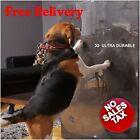 Dog pets Door Scratch Protector claw scratching Cover Clear shield Flexible dogs
