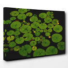 Canvas Wall Art Picture Print Lily Pad Pond (2)