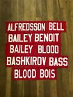 Ottawa Senators Game Used Jersey Nameplates Red Karlsson Alfredsson NHL $9.99 USD on eBay