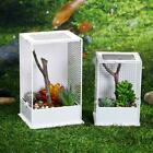 Acrylic Box Insect Spider Reptile Transport Breeding Feeding Case Container