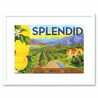 Advert Fruit Farm Food Brand Splendid Lemons Framed Wall Art Print