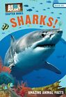 SHARKS! (ANIMAL PLANET CHAPTER BOOKS #1) (VOLUME 1) By Lori Stein - Mint