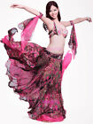 Belly Dance Costume Outfit 4 PCS Bra Belt Skirt Arms Bollywood Carnival XL/D Cup