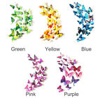 3d Butterfly Wall Sticker Home Diy Decoration Removable Decal Colorful 12pcs