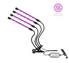 Led Grow Light Flower Hydroponic Full Spectrum Growing Lamp For Indoor Plants