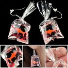 Fashion Goldfish Drop Earrings for Women 925 Silver Jewelry Resin A Pair/set