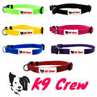 DOG PUPPY BOLD DURABLE NYLON ADJUSTABLE COLLAR RANGE OF COLOURS