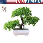 Welcoming Pine Bonsai Simulation Artificial Potted Plant Ornament Home Decors