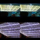 512 LED Curtain Lights 4*4M- Warm White & White For Choice