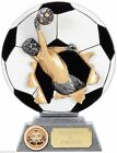 'Xplode' GOALIE Resin Football Trophy FREE ENGRAVING UK TROPHIES XP003