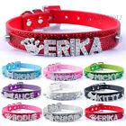 Sparkling Personalized Dog Collars Customized Free Rhinestone Name Bling Buckles