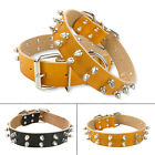 2 Row Cool Spiked Studded Pet Dog Collars Soft Leather For Pitbull Amstaff